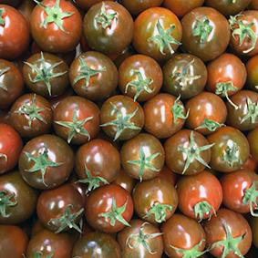 european-salad-company-tomatoes.jpg