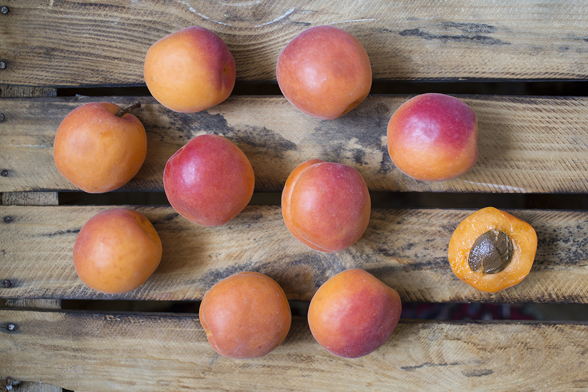 apricots-small.jpg