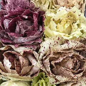 castelfranco-esc-market-report-july-2018.jpg
