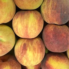 peaches-esc.jpg