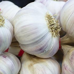 garlic-esc.jpg