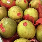 esc-pears.jpg