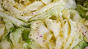 Castelfranco - Possibly the most elegant of raddichios with its speckled leaves. Available from around September to May.