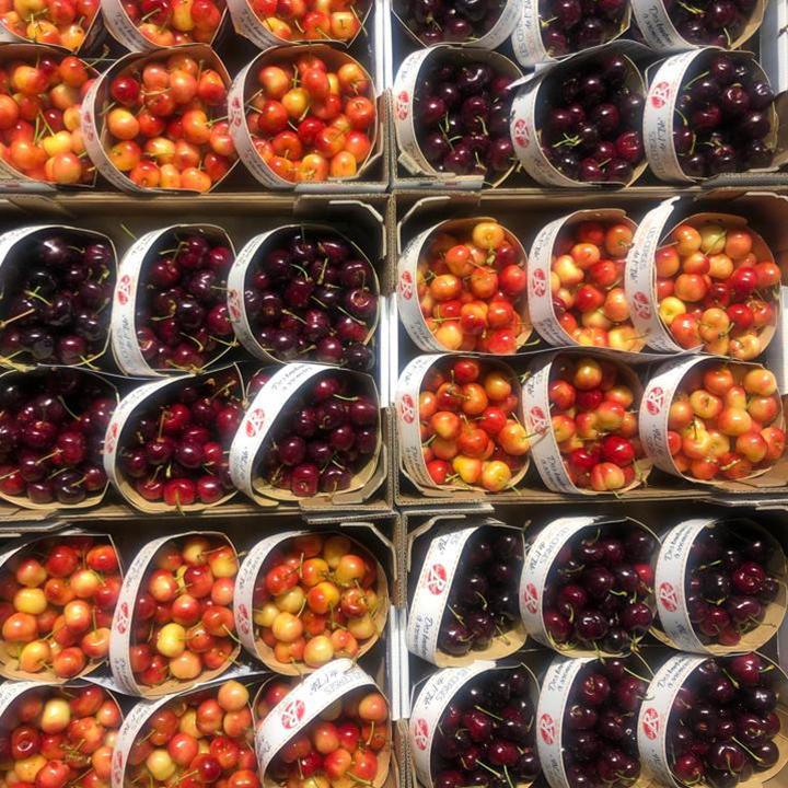 esc-cherries-7.6.19.jpg