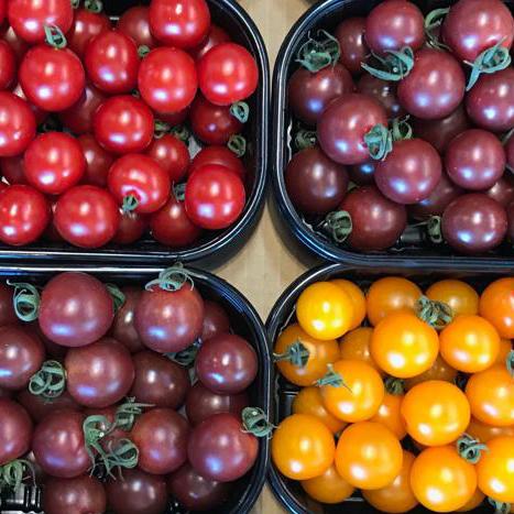 esc-italian-cherry-tomatoes-5.7.19.jpg