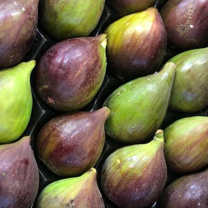 esc-figs-5.7.19.jpg