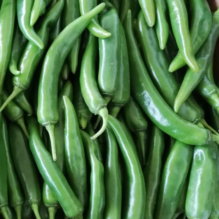 esc-green-chillies-5.7.19.jpg
