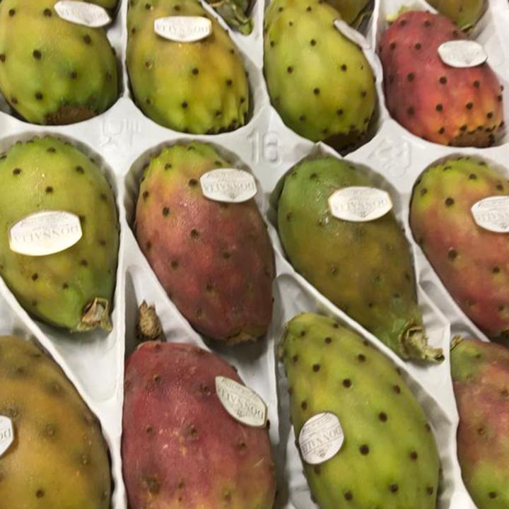 esc-prickly-pears-2.9.19.jpg