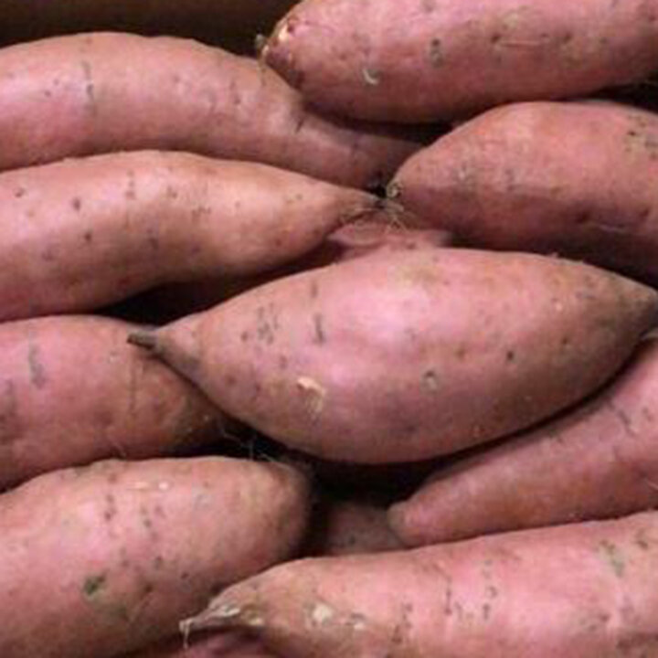 esc-sweet-potatoes-7-11-19.jpg