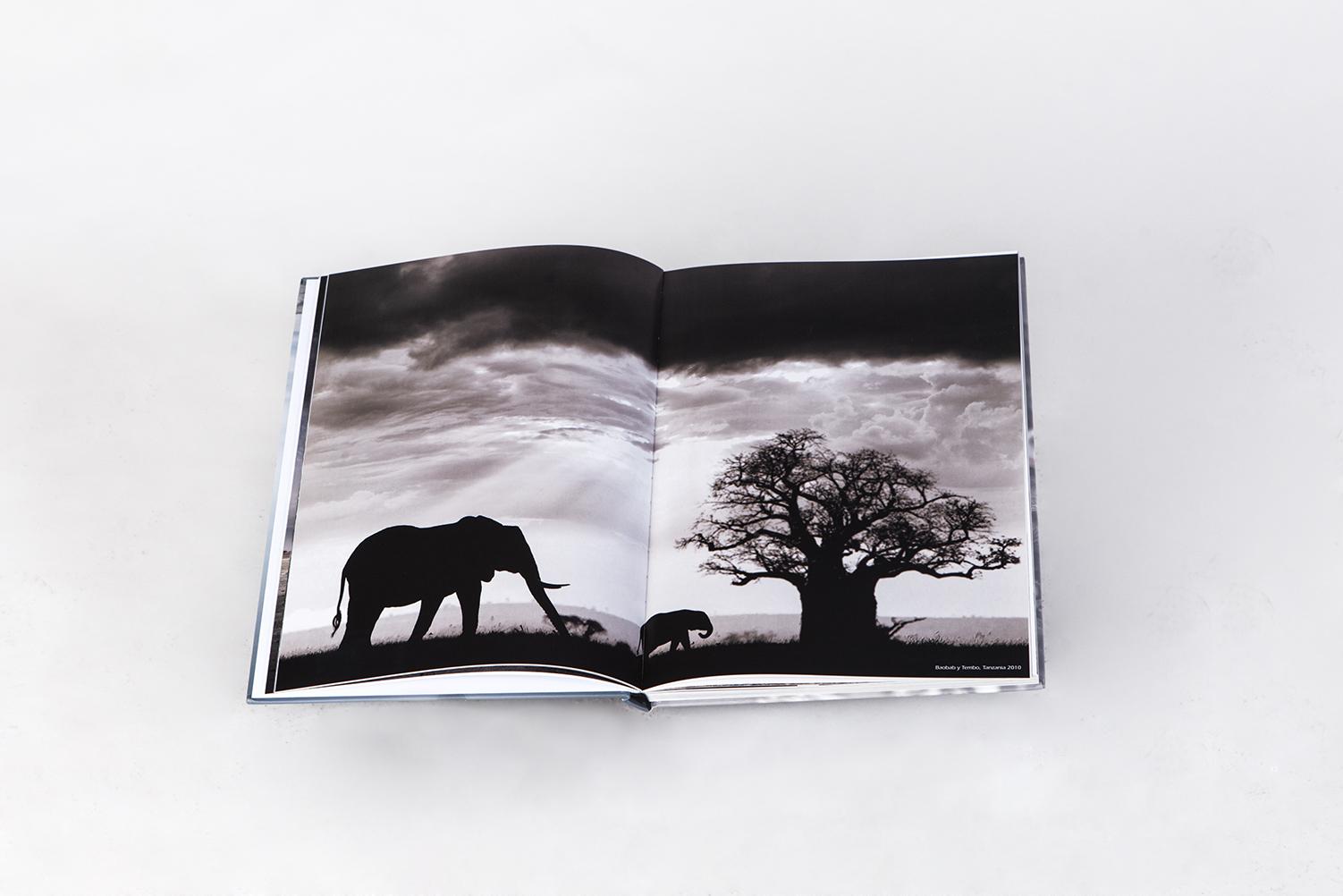 Baobab y Tembo en el libro El Silencio Habitado