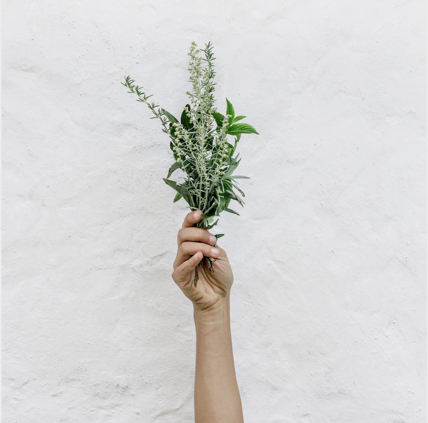 Choose one, two or all the following herbs: Rosemary  (works as a disinfectant, helps with headaches and fever) , fresh thyme  (for the cough)  and oregano  (for the cough and prevents bronchitis)