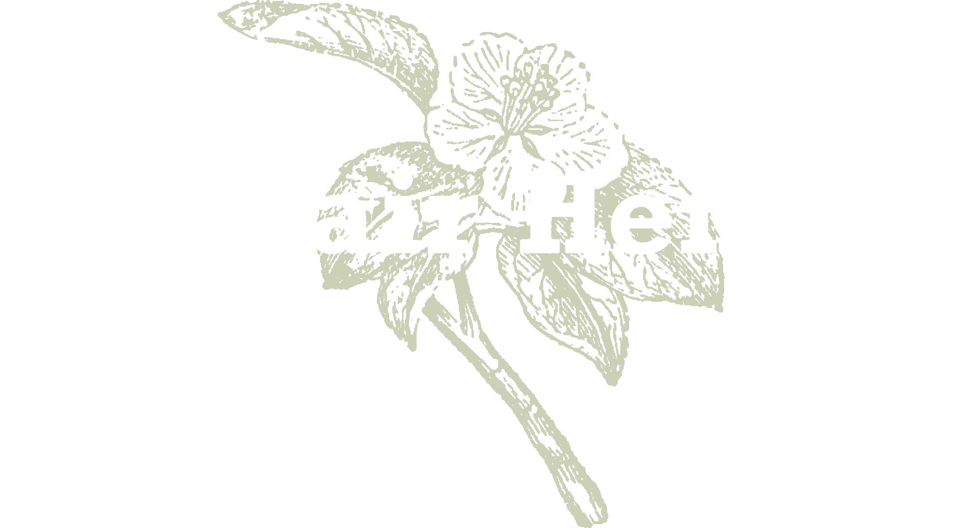 logo@2000x.png