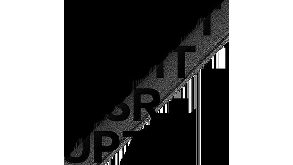 maastrichtdisrupt logo.png