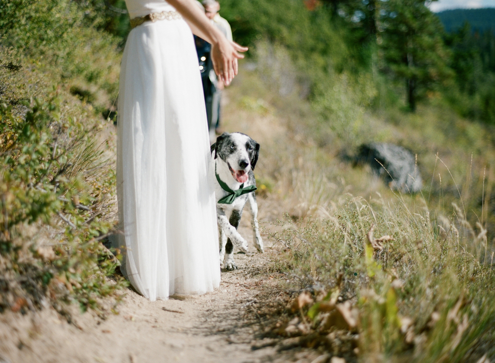 mt hood wedding photographer mt hood oregon wedding photographer shannon griffin_0061.jpg