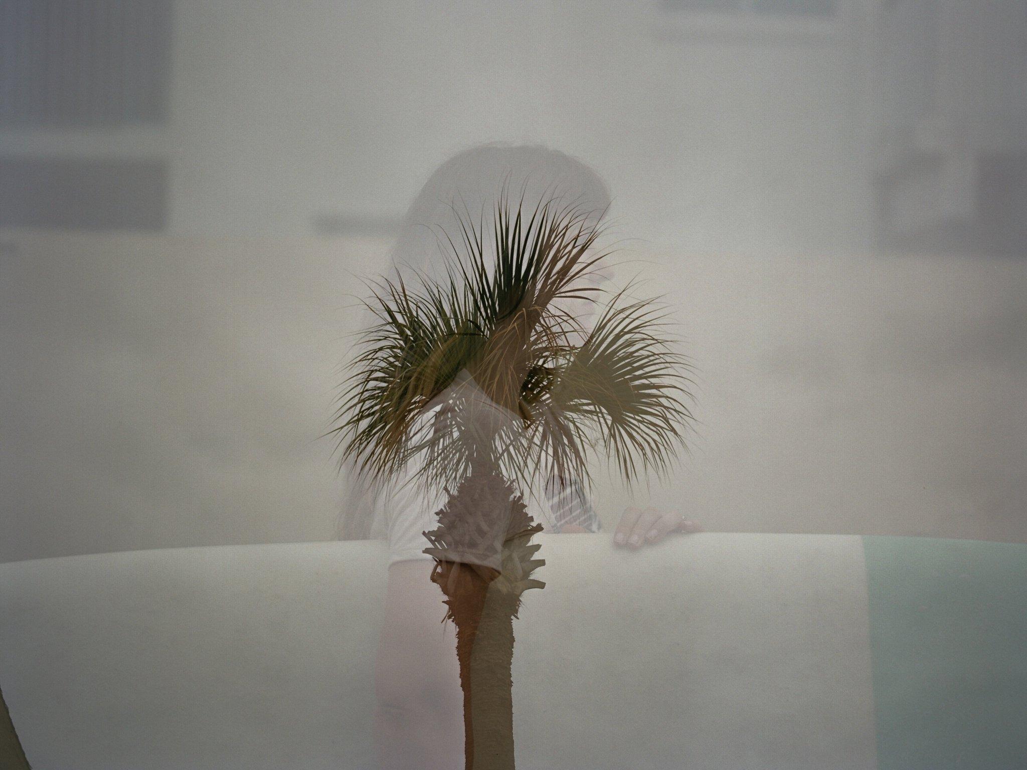 west palm beach branding photographer west palm beach headshot photographer shannon griffin photography_0007.jpg