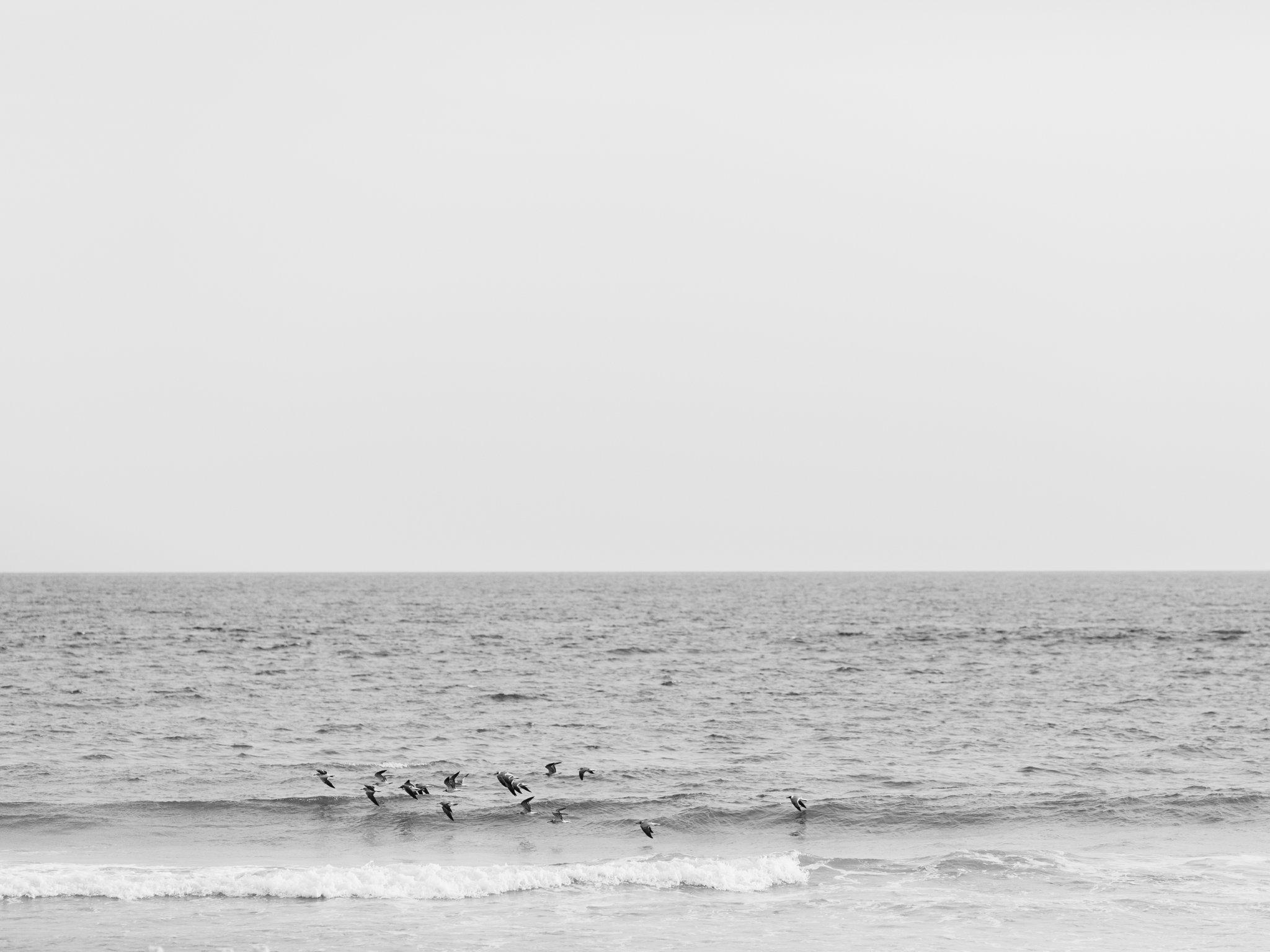carillon beach wedding photographer shannon griffin photographer_0017.jpg