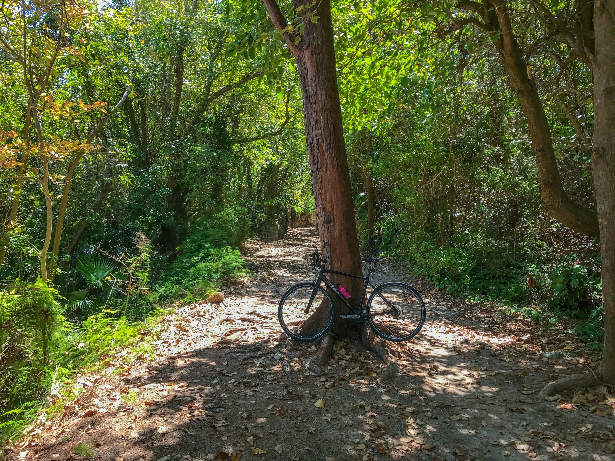 Biking Bermuda's Railway Trail