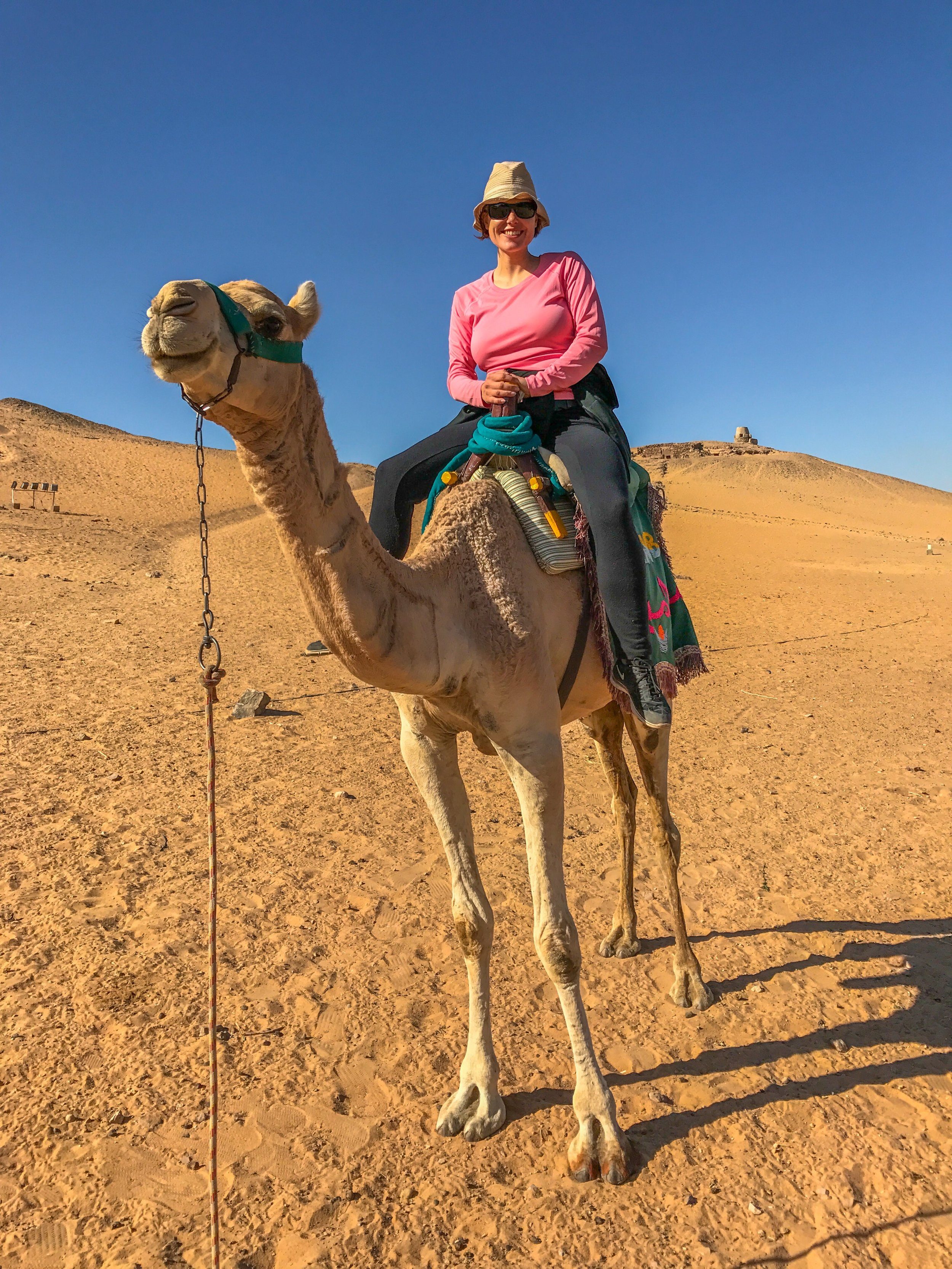 The camel that threw me into the Sahara