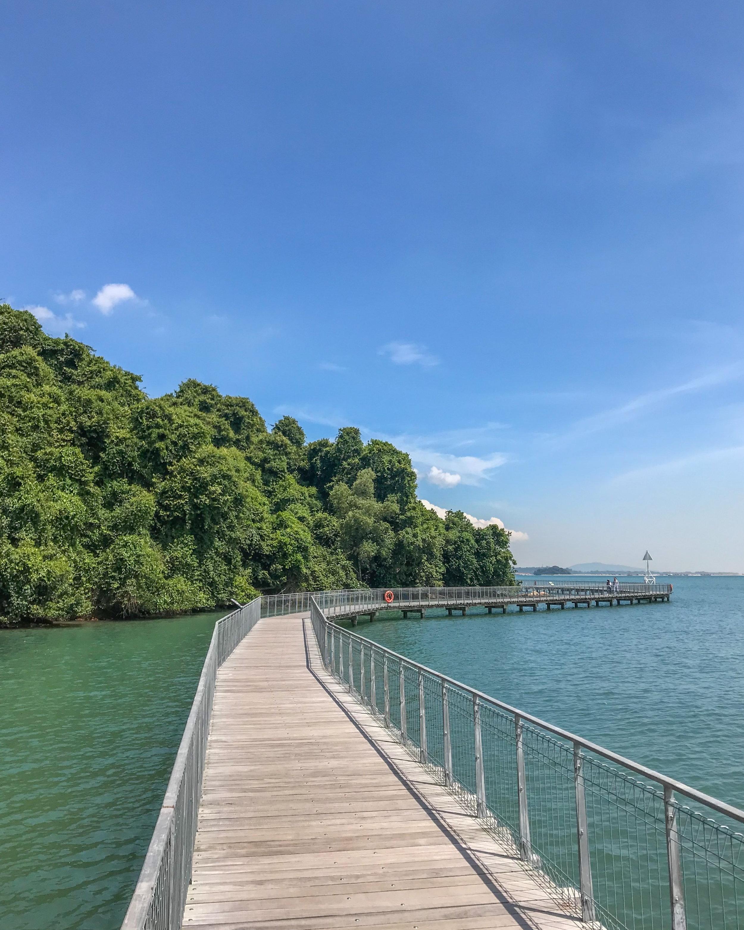 Pulau Ubin's kilometer-long boardwalk