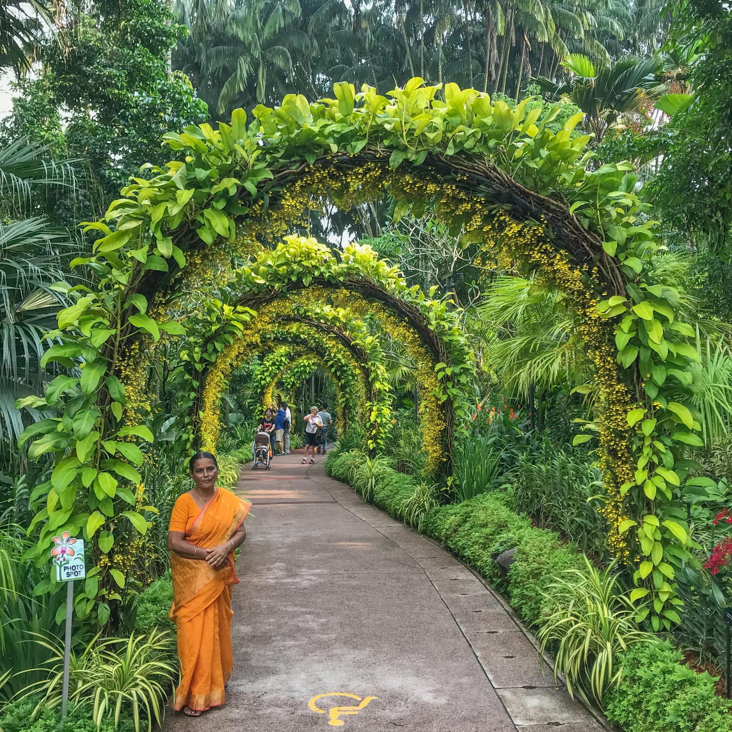 The actual botanic garden in Singapore