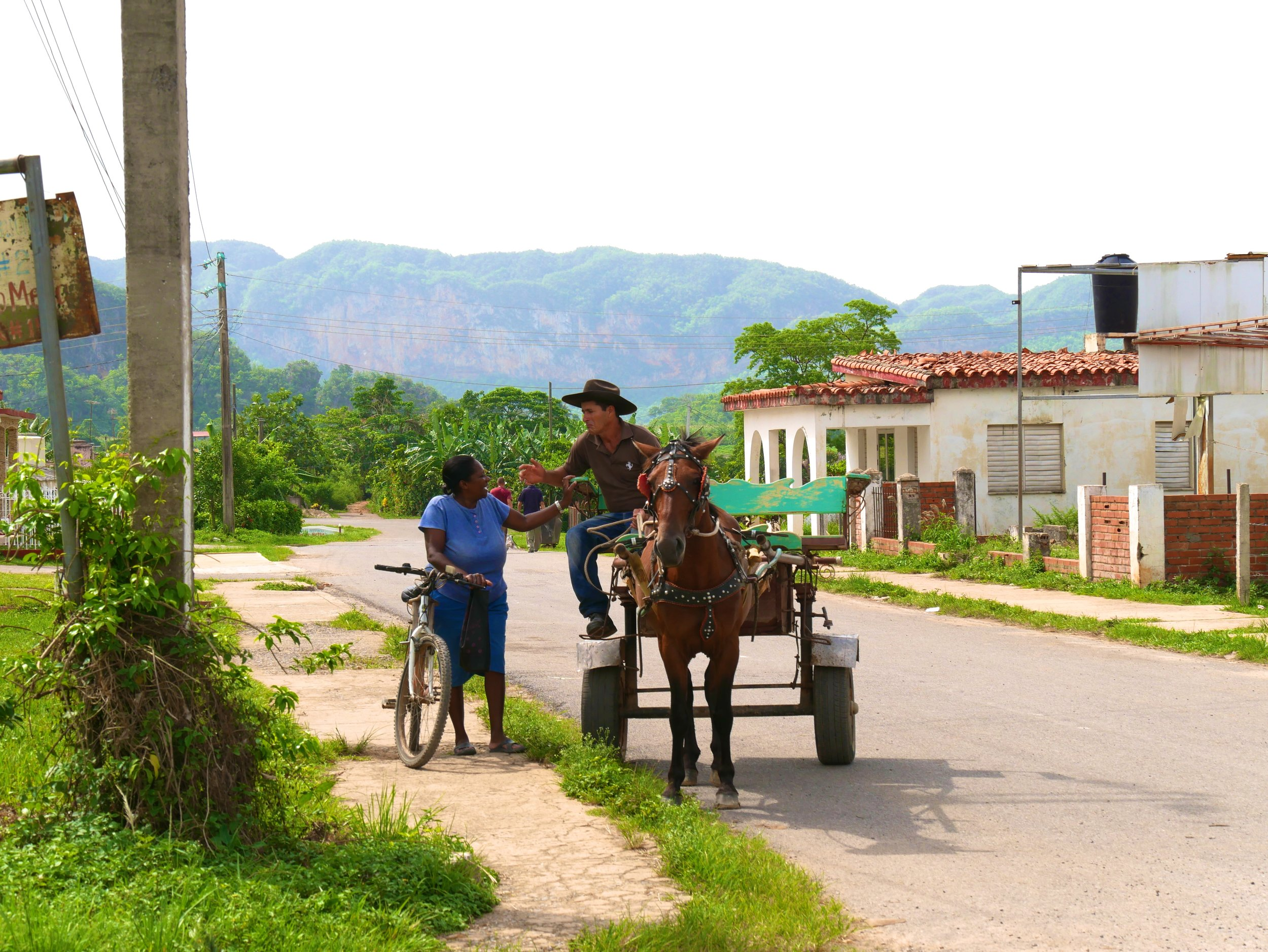 Vinales horse carriage taxi