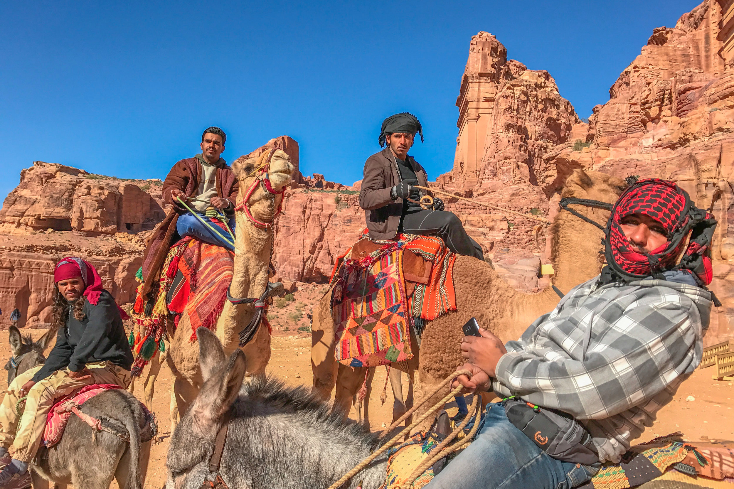 Bedouin camel guides