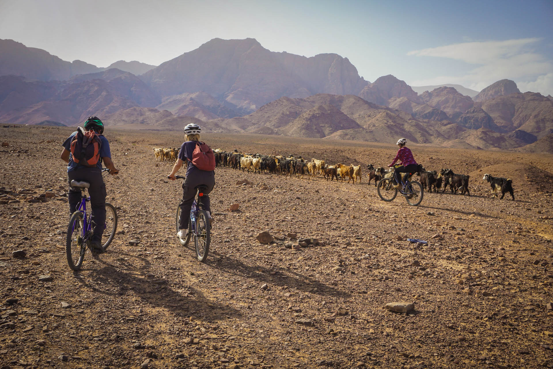 Jordan has something for everyone, including off-road cycling with goats!