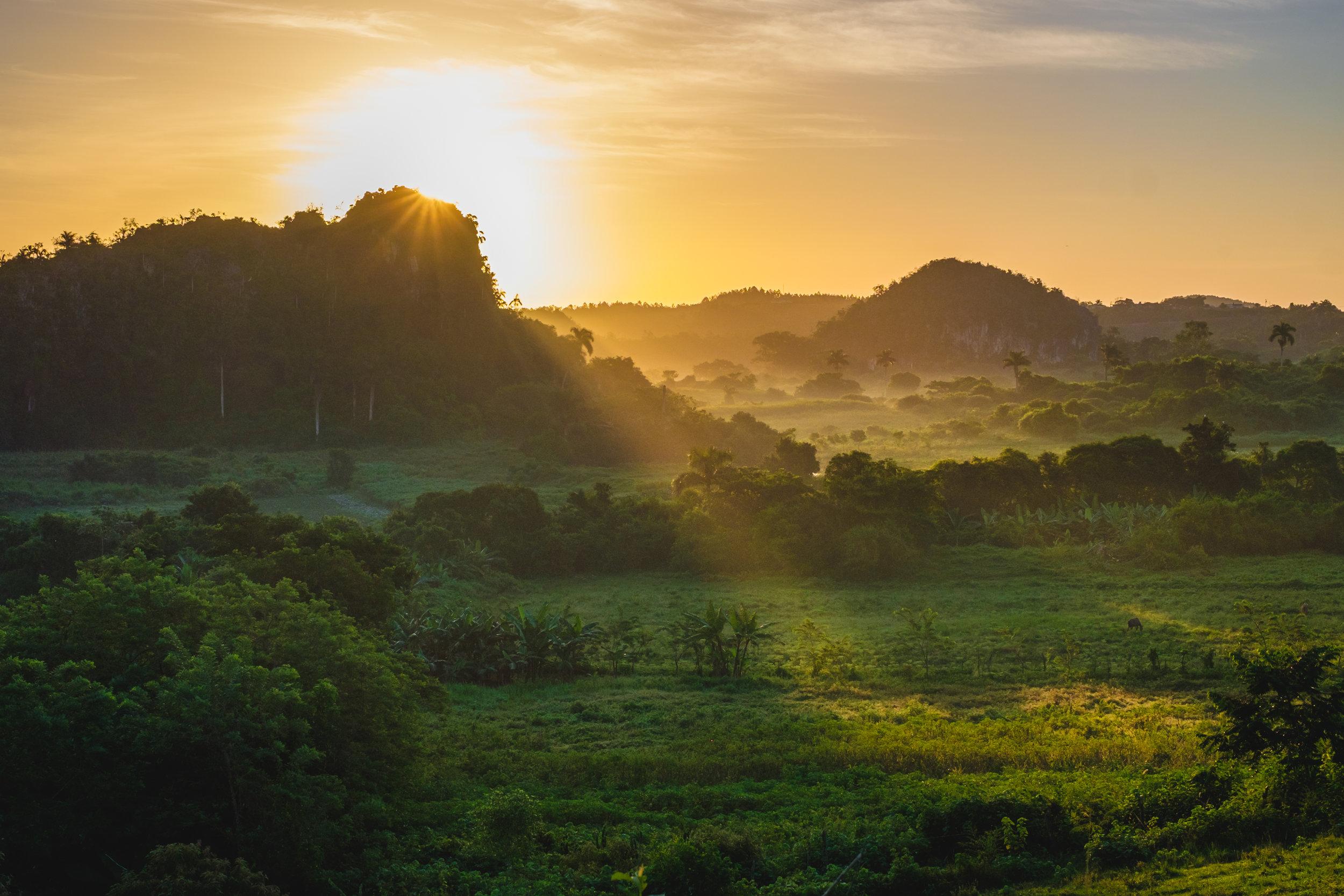 Vinales Valley, tobacco country