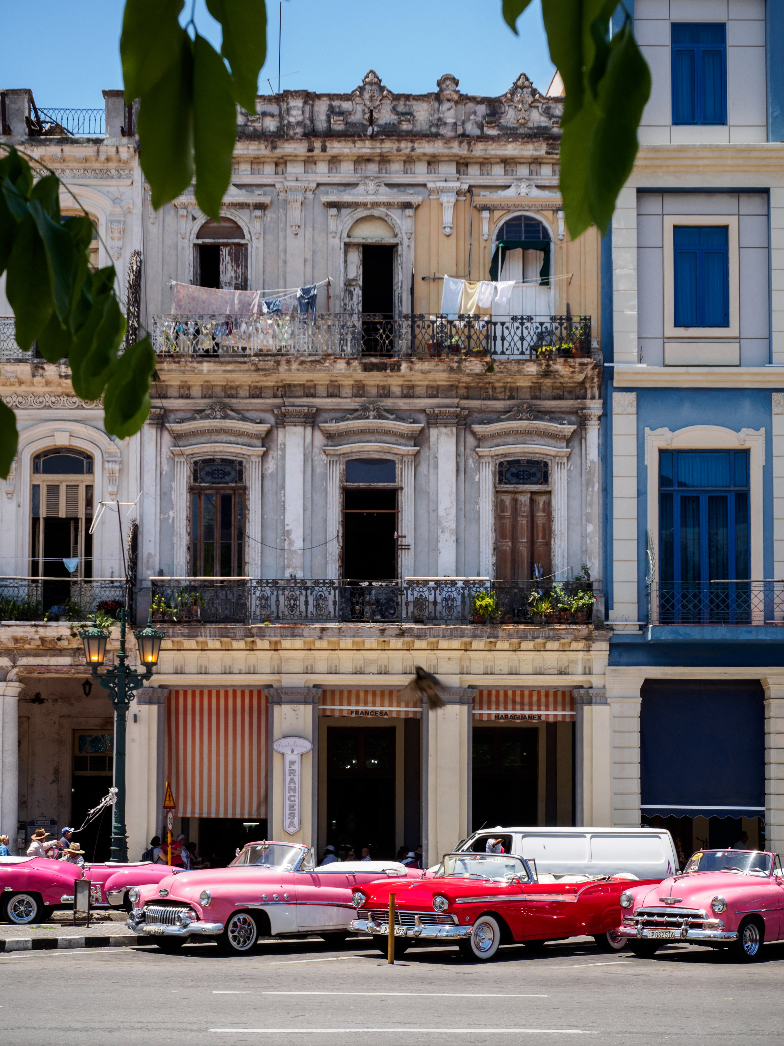 Classic cars waiting for business