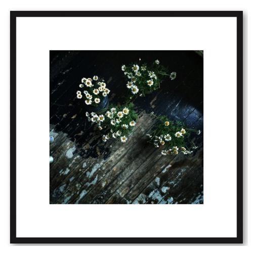 Floral 6 by Erik Melvin