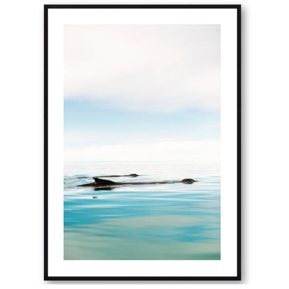 The Humpbacks of Akureyri by Robert and Tiffany Peterson