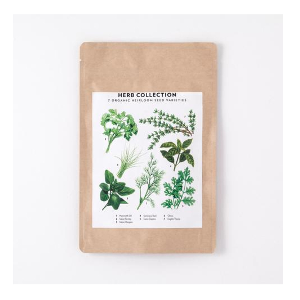 Culinary Herb Seed Collection With 11 organic herbs