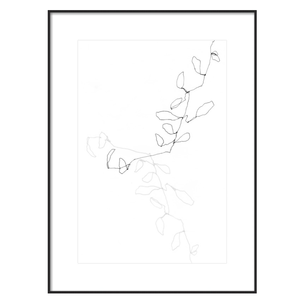 Eucalyptus 1 by Ashleigh Ninos