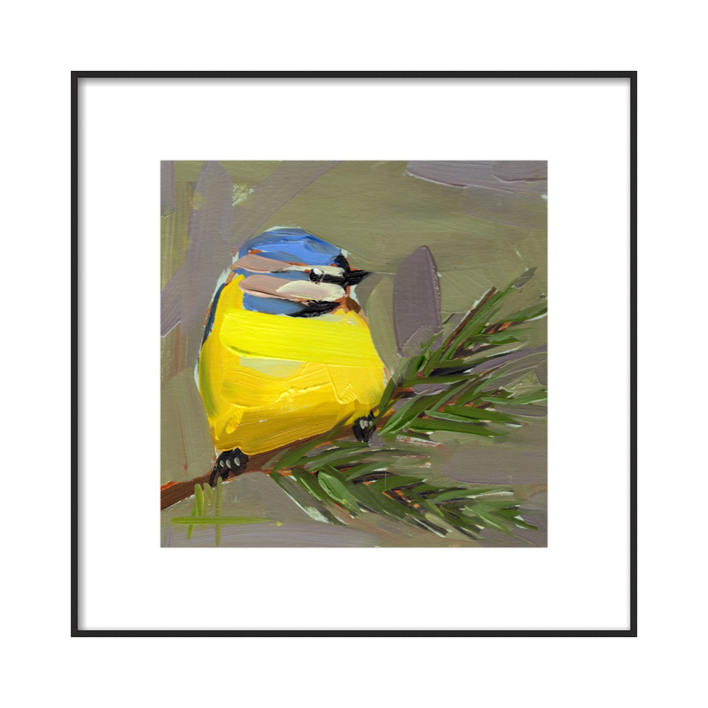 Blue Tit Bird no. 34 by Angela Moulton