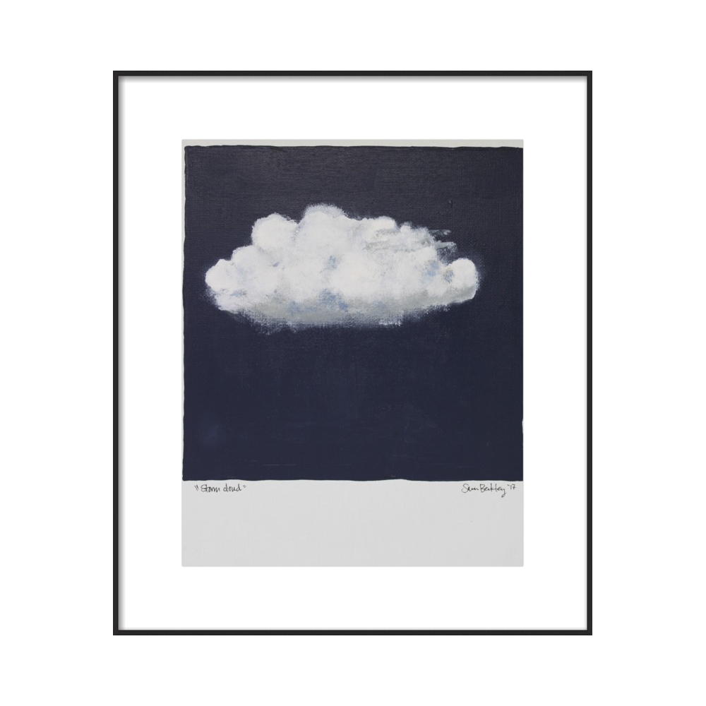 Storm Cloud by Sara Beckley and Laura Else