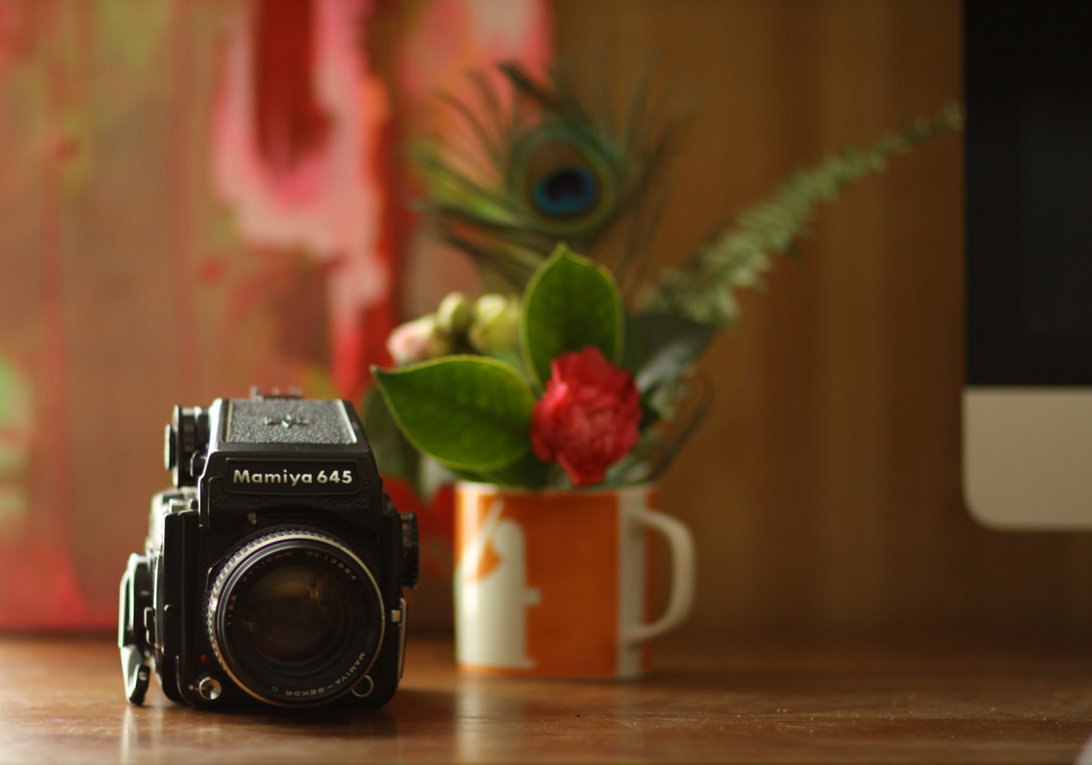 """Lucy's first """"serious"""" camera, a Mamiya M645."""