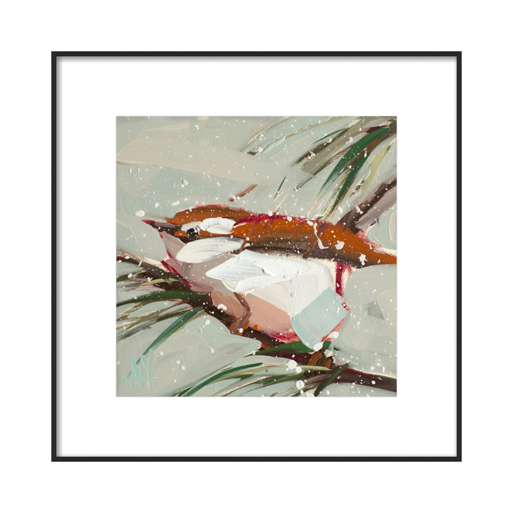 Winter Carolina Wren by Angela Moulton