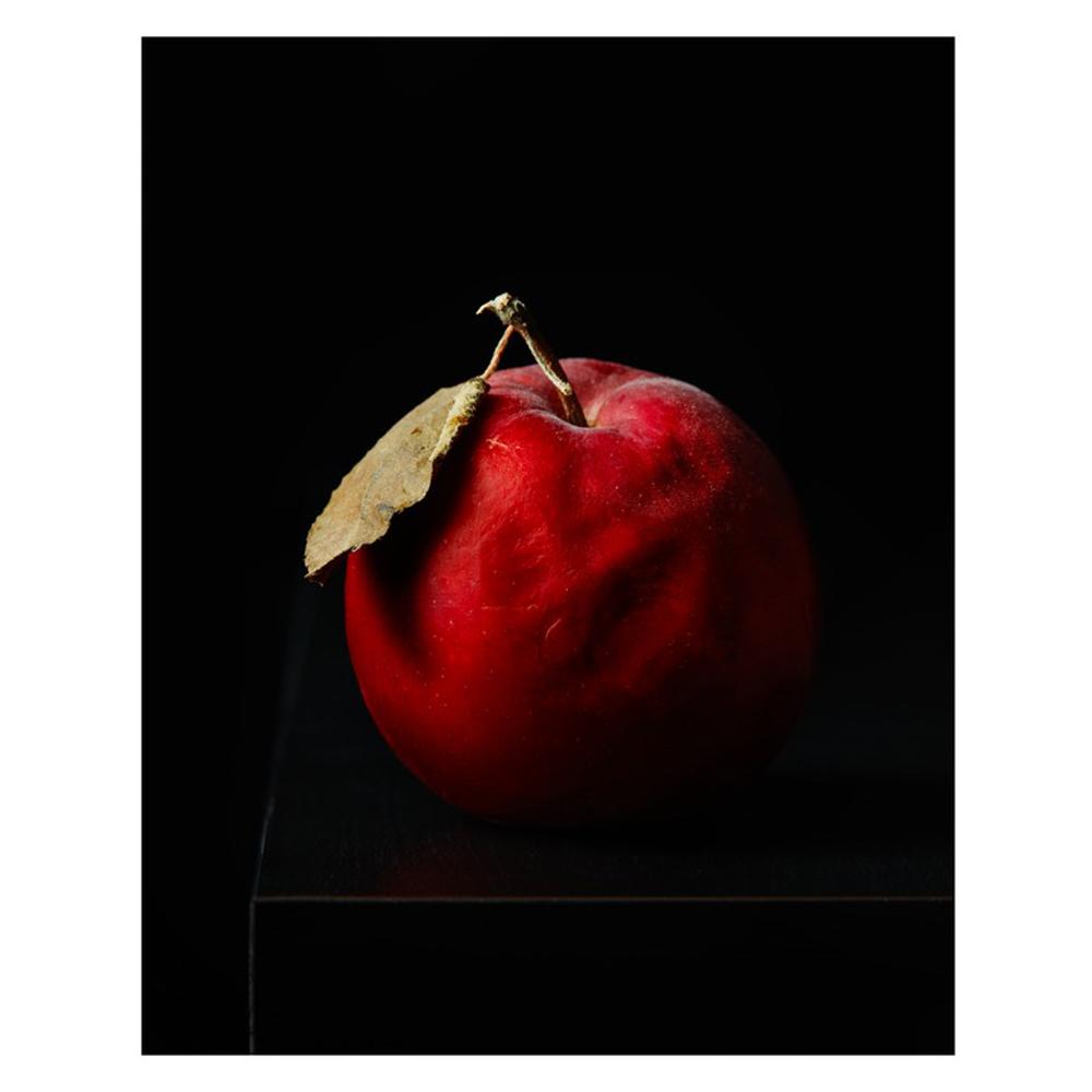 Aged Apple by Dustin Halleck