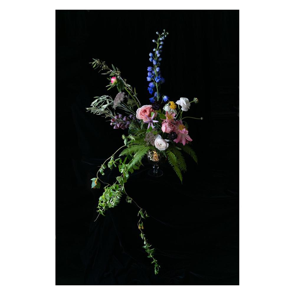 Dutch Master Inspired Floral Fine Art by Emilia Jane Schobeiri