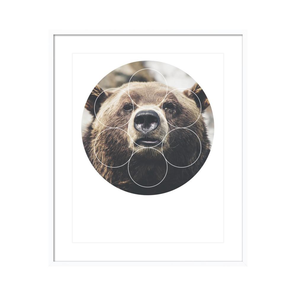 Big Bear Buddy - Geometric Photography by Emiliano Deificus