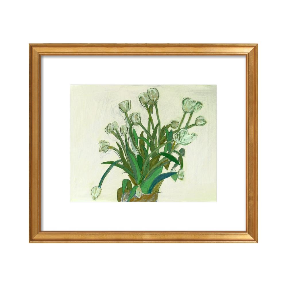 viridiflora tulip  BY LIZ INNVAR