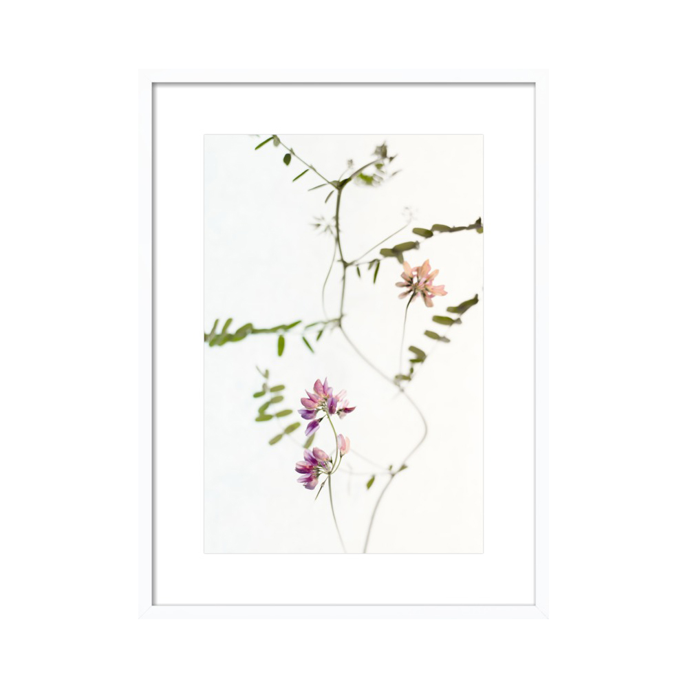 Mauve Tiny Flowers  BY QING JI