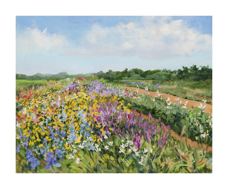 Balsam Farms Flower Field  BY CASEY CHALEM ANDERSON
