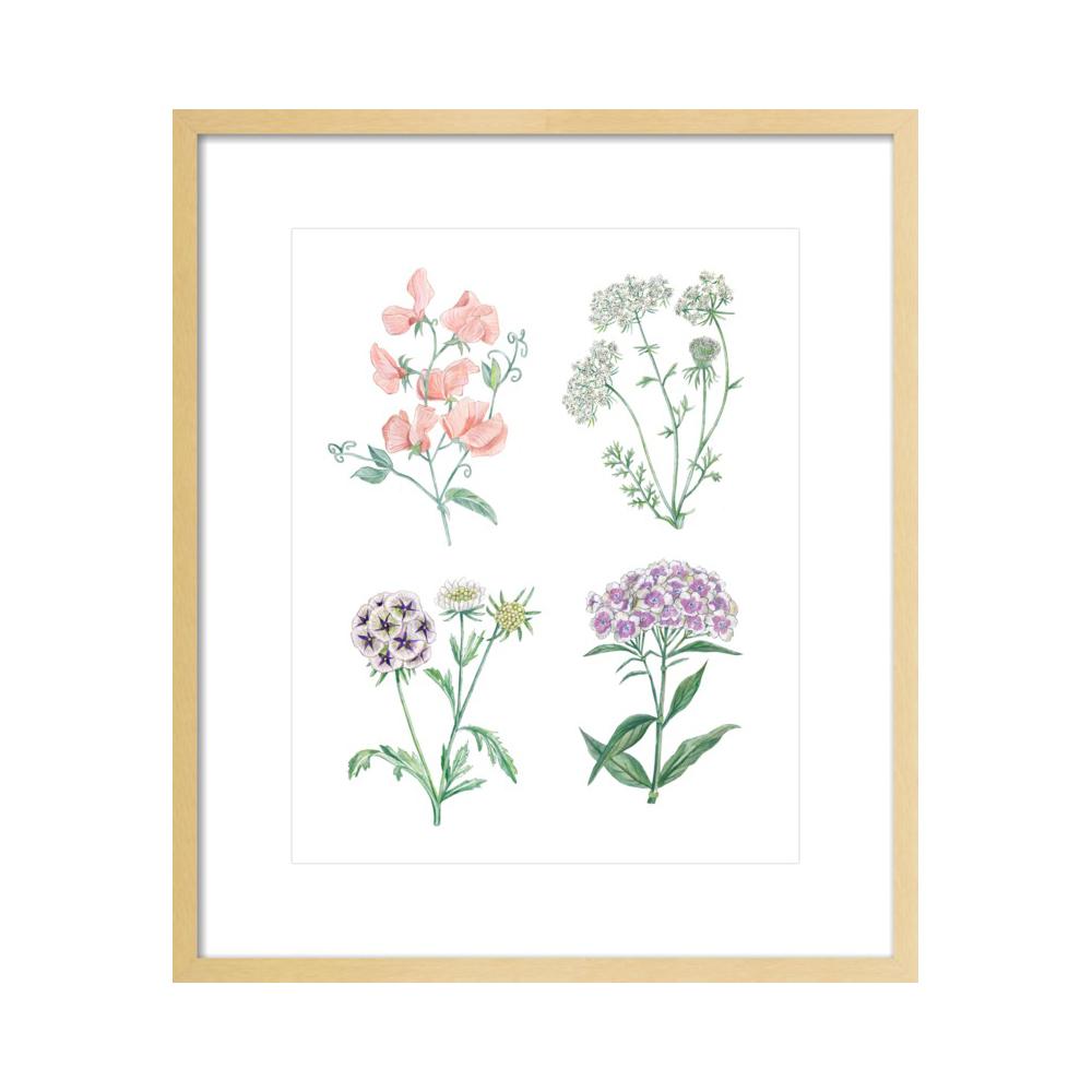 Botanics  BY LANA EFFRON