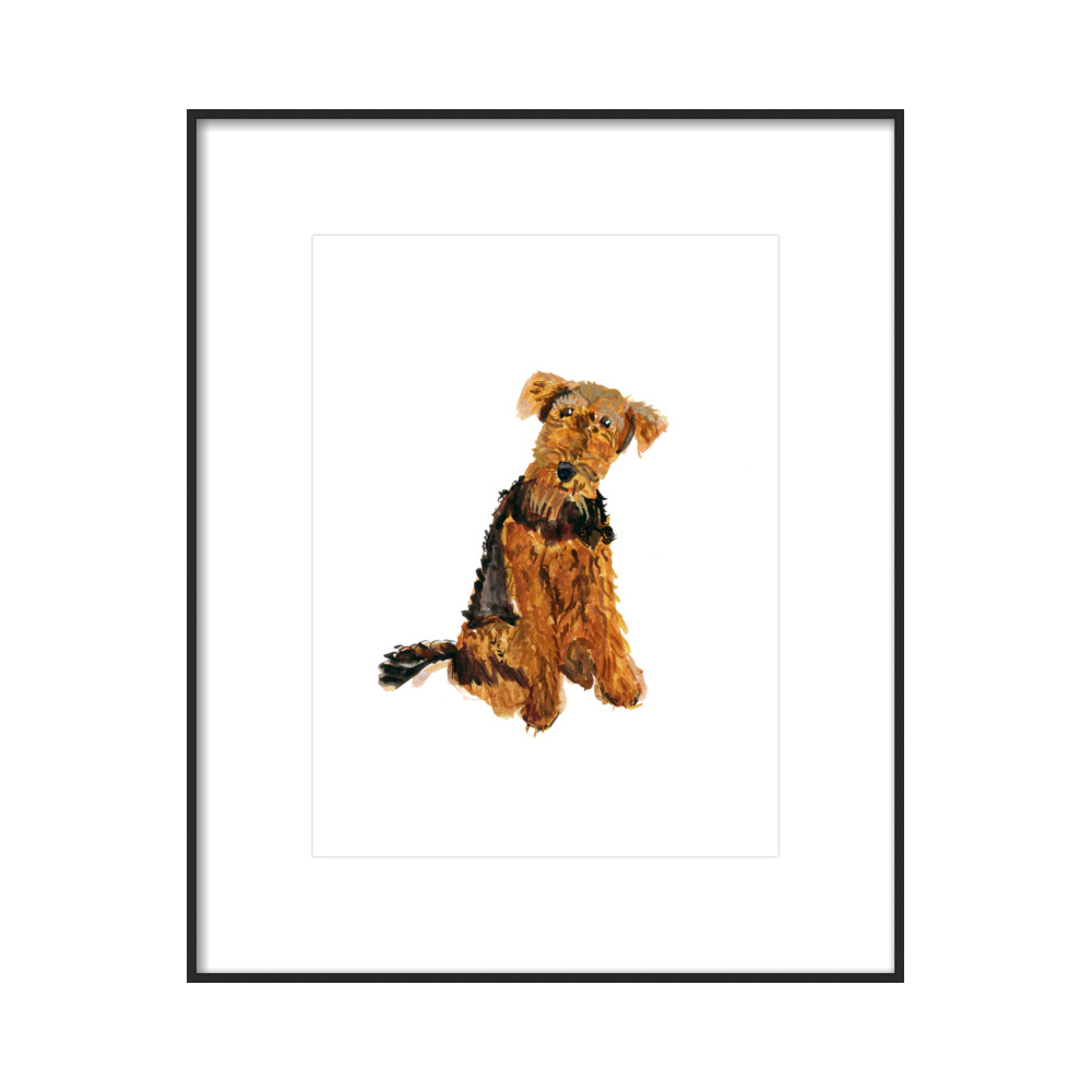 Airedale  BY JACKIE MANCUSO