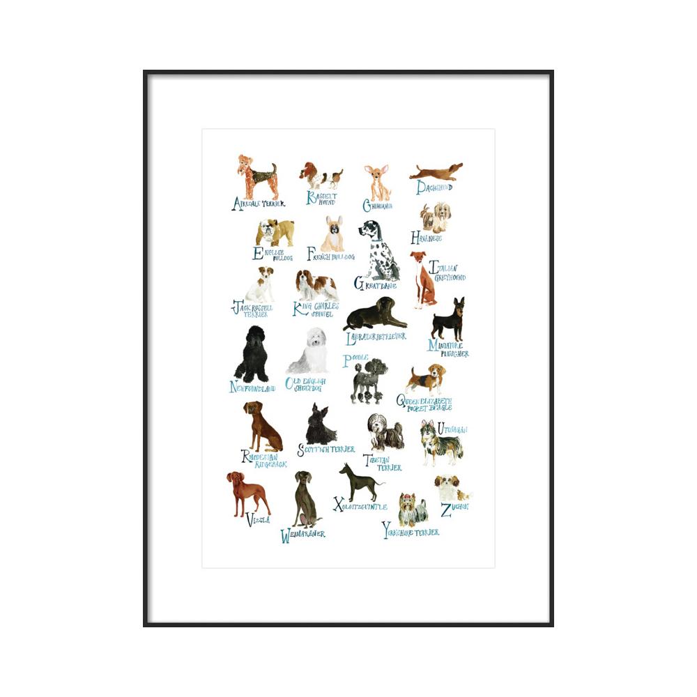 Dog Alphabet  BY JILL DELAVAN