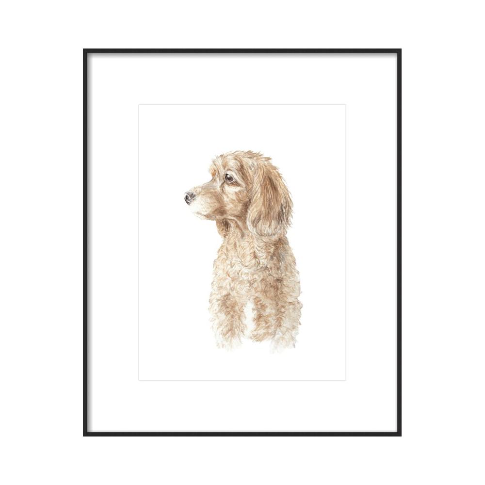 Cocker Spaniel Dog Pet Portrait Profile Watercolor  BY LAUREN ROGOFF