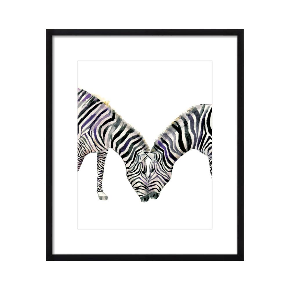 Zebra  BY LANA EFFRON