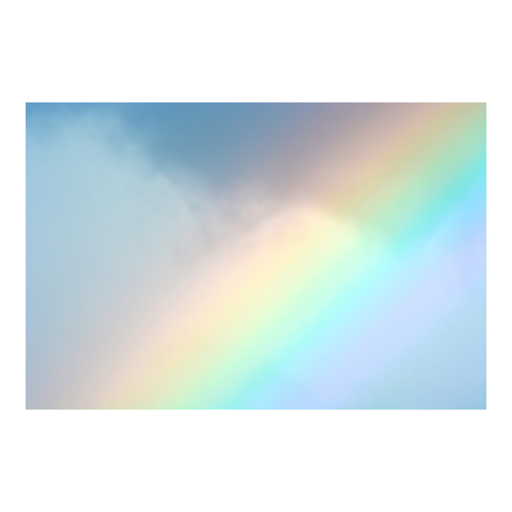 Rainbow  BY TAL PAZ-FRIDMAN
