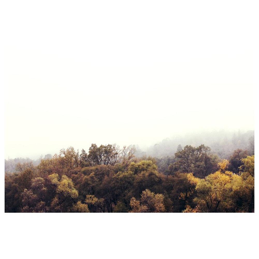 Autumn Afternoons  BY HOPE BAINBRIDGE